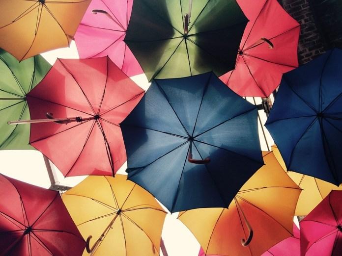 Mercado de seguros e resseguros foca em profissionais de outros setores